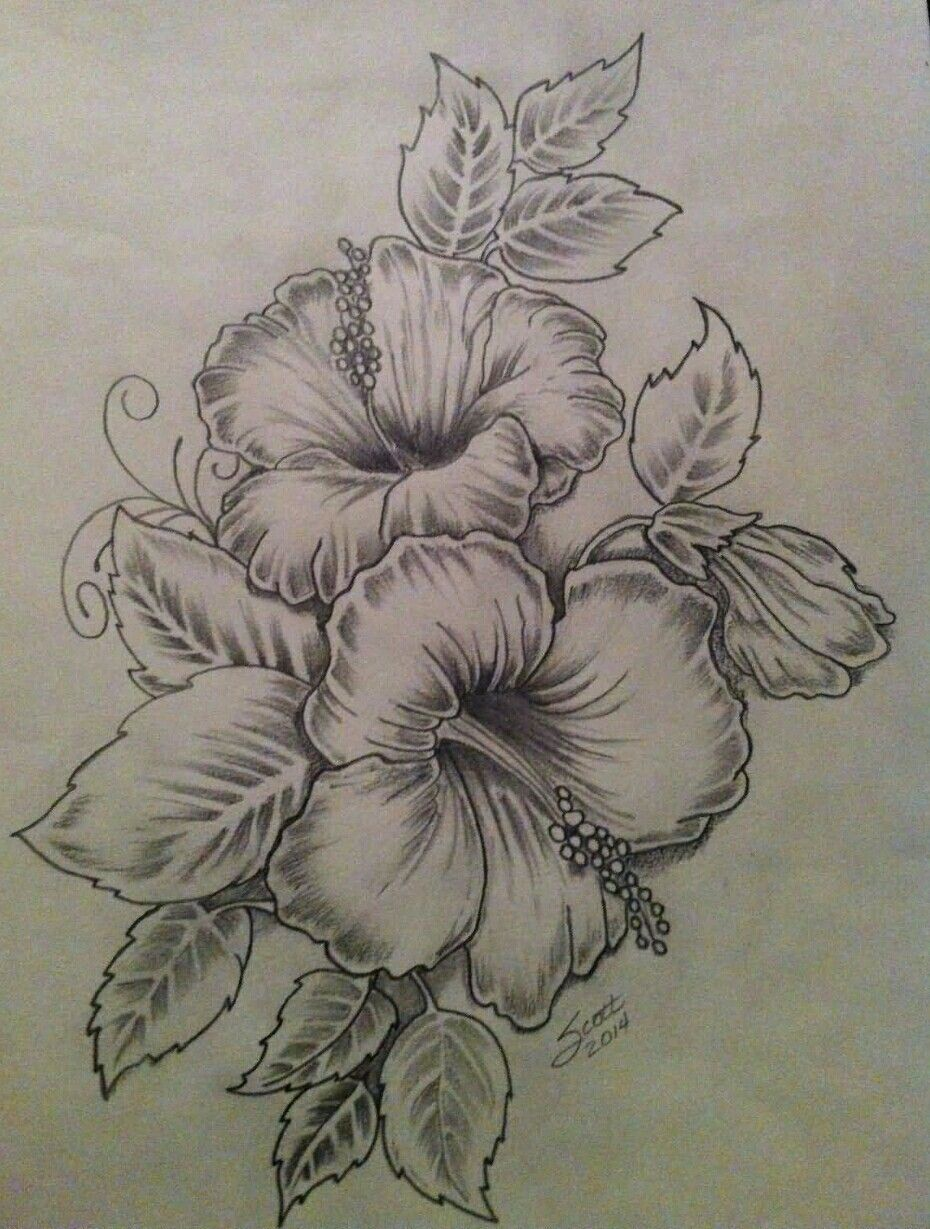 Pin By Edith Lawless On Drawing Painting Lettering Hibiscus