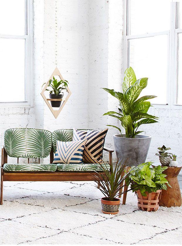 Planters Home Pinterest Plantas, Plantas de interior y Interiores - decoracion de interiores con plantas