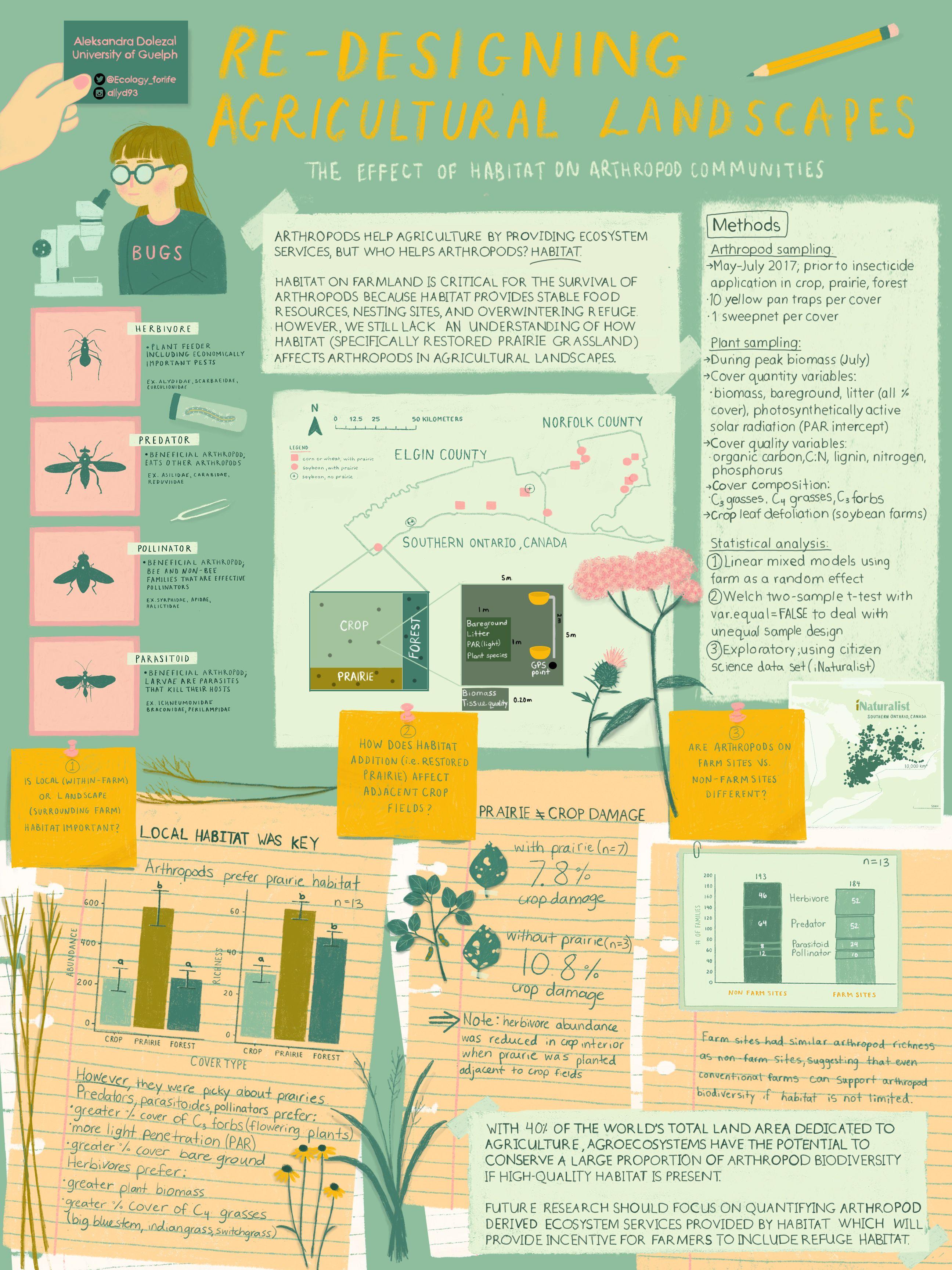 My Advice For Creating An Academic Poster Infografis Desain Editorial Desain Ilustrasi