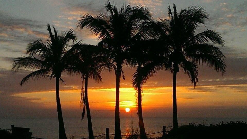 602e90f72c27bf453cb76dc8ebdc3725 - Palm Gardens Nursing Home In Port St Lucie