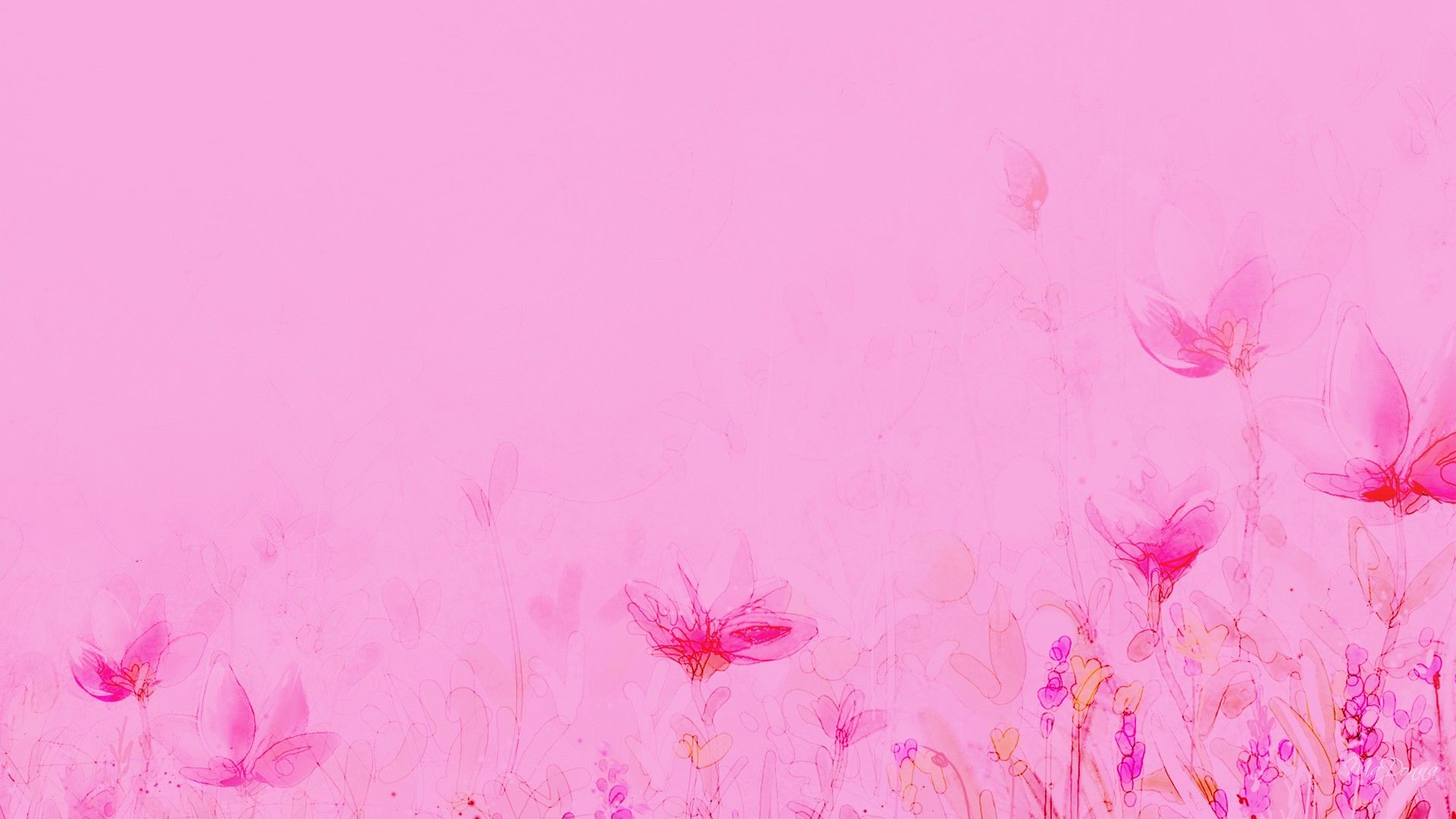 Pin By Medina Mujagic On Photography Pink Flowers Wallpaper Pink Wallpaper Backgrounds Red Color Background