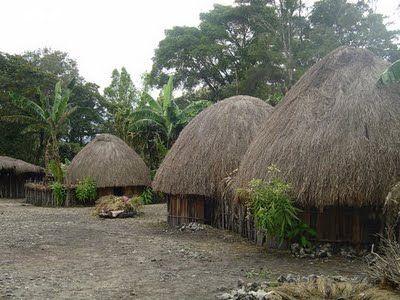 Rumah honai rumah adat suku asmat papua indonesia for Traditionelles haus bali