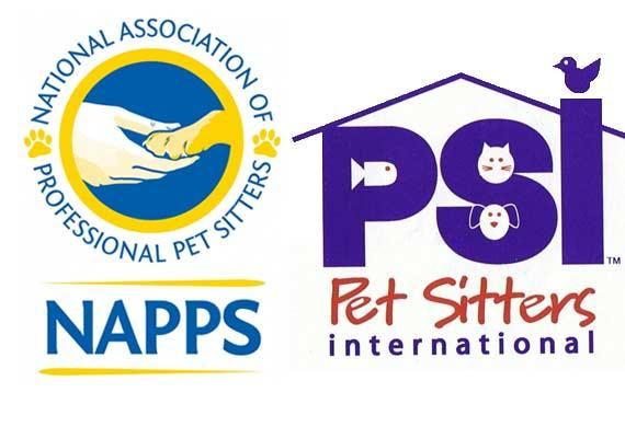 Top Ten Tips On Finding A Qualified And Professional Pet Sitter