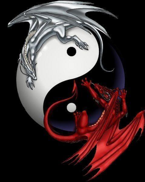 Ying Yang Signs Pinterest Dragon Tattoo Designs Japanese