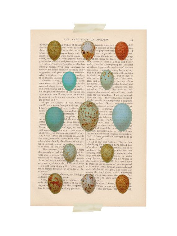 dictionary art bird print - BIRD EGGS collection - vintage art book page print - birds nest birds eggs robins eggs