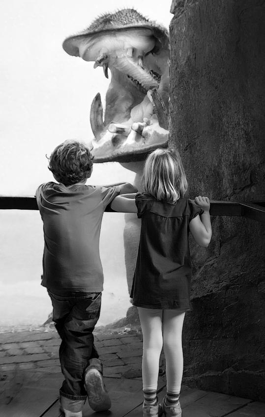 Hippo Zoo by juan luis duran
