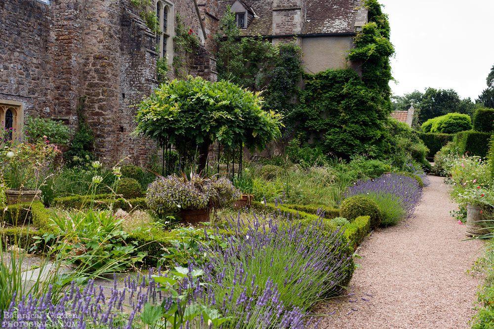 Cothay Manor Garden Near Wellington Somerset Manor Garden Dream Garden Garden Inspiration