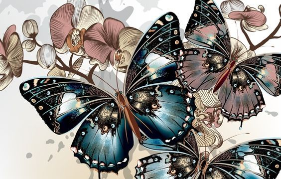 Обои бабочки, вектор, крылья, окрас, цвета картинки на рабочий стол, раздел…