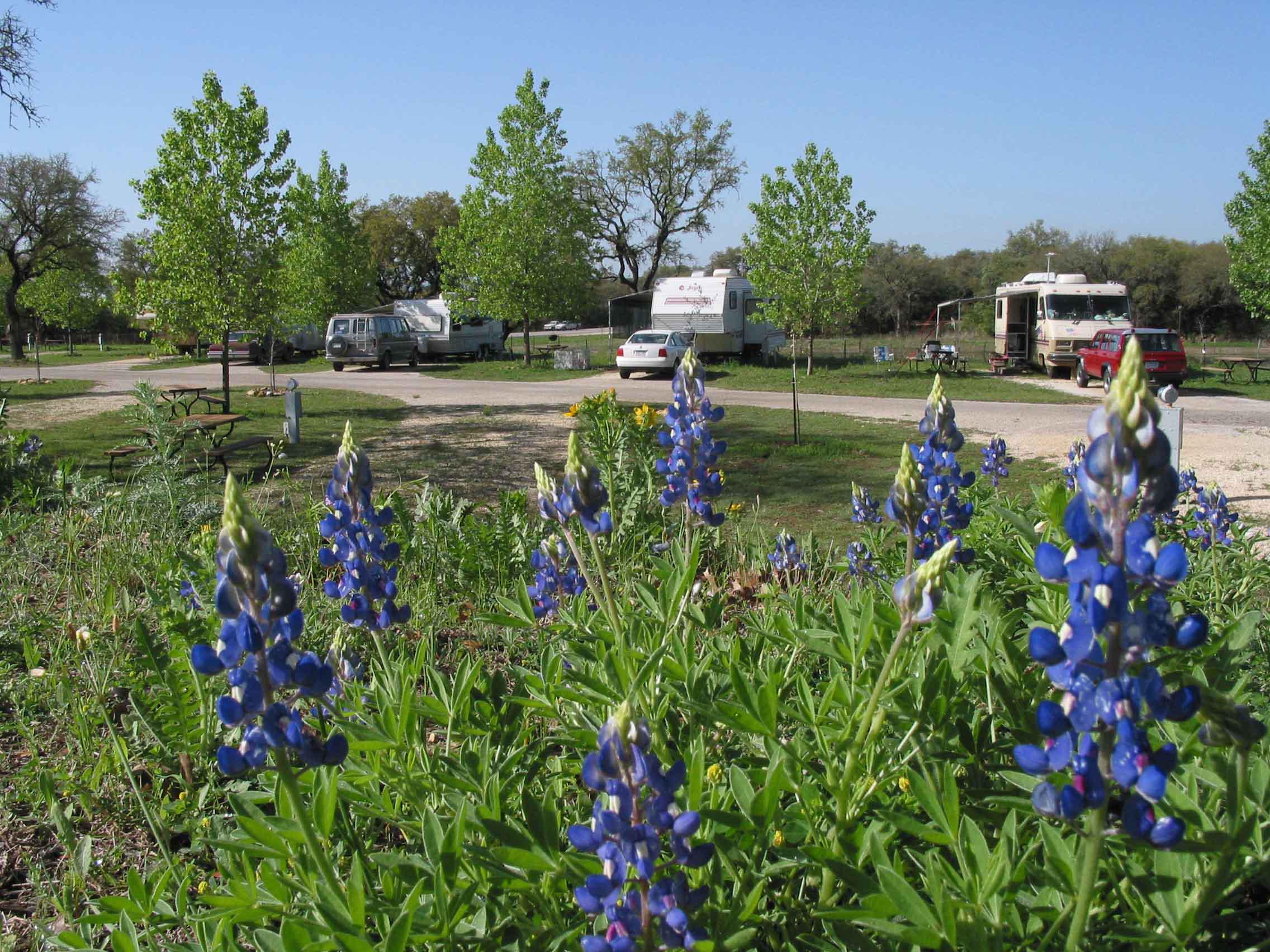Pomarosa Rv Park At Bandera Texas Campground Rv Parks Texas Hill Country
