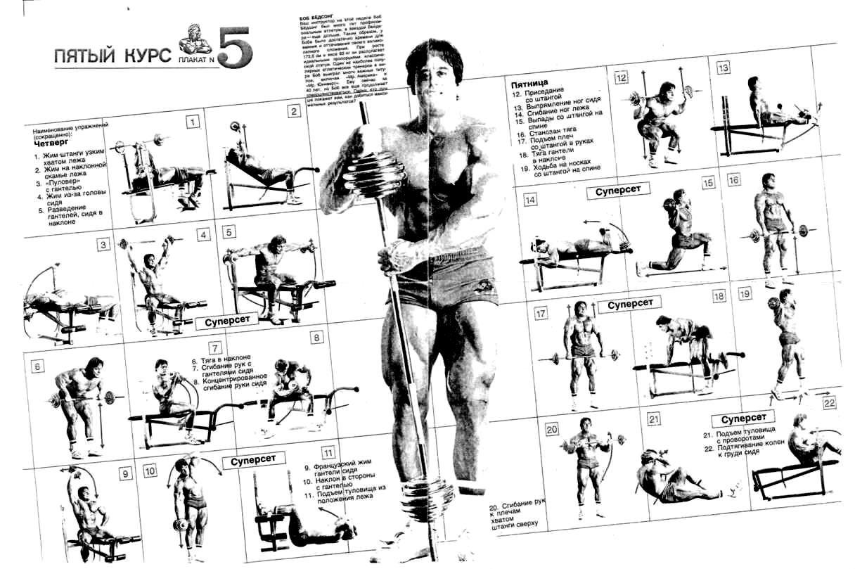 Схема тренировок бодибилдинга в картинках