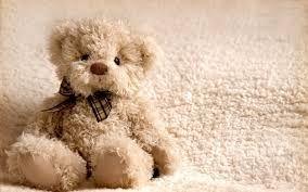 「teddy bear」の画像検索結果