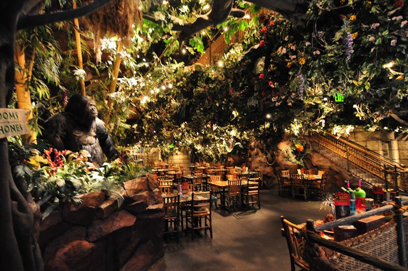 rainforest cafe inc outline to rainforest The rainforest cafe recently opened the brand new lava lounge with outdoor, waterfront dining check out the new volcano show that occurs each night in downtown the kids and i did our best to tackle this awesome dessert.