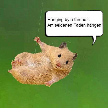 German Idioms in Pictures - Hanging by a Thread = Am seidenen Faden hängen