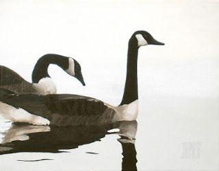 Beautiful Geese x