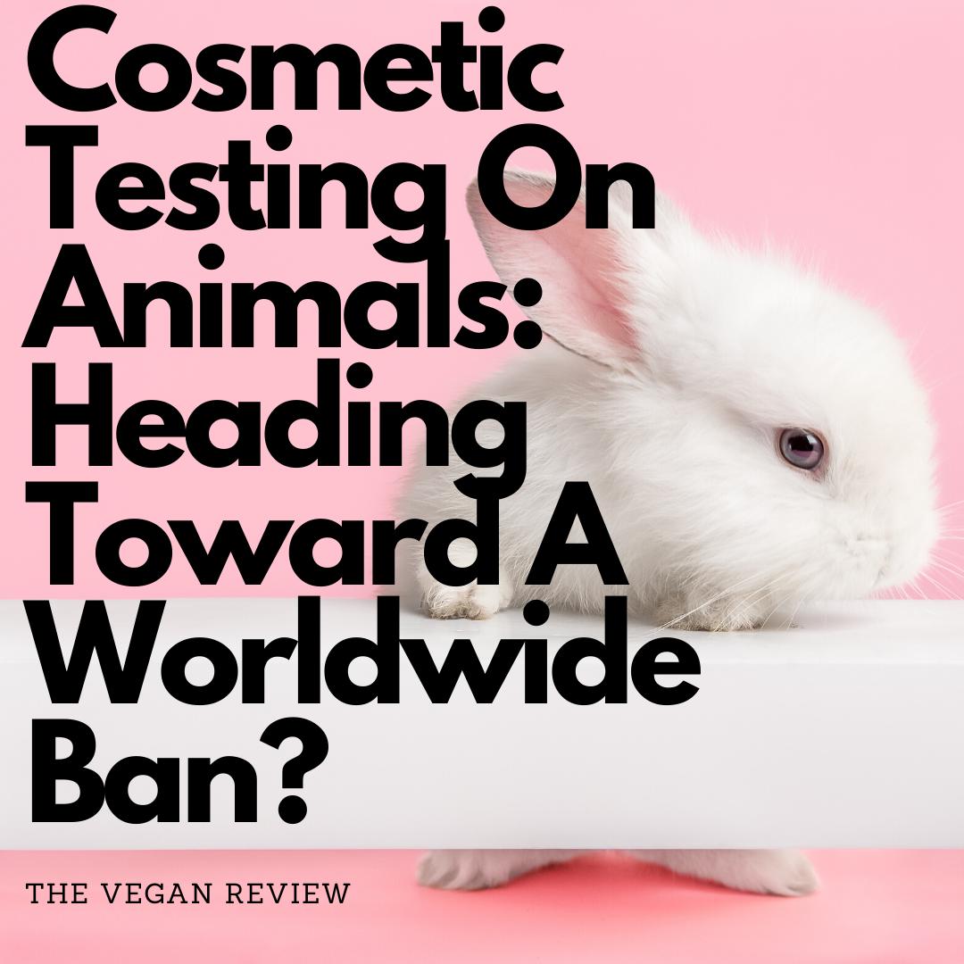 Cosmetic Testing On Animals Heading Toward A Worldwide