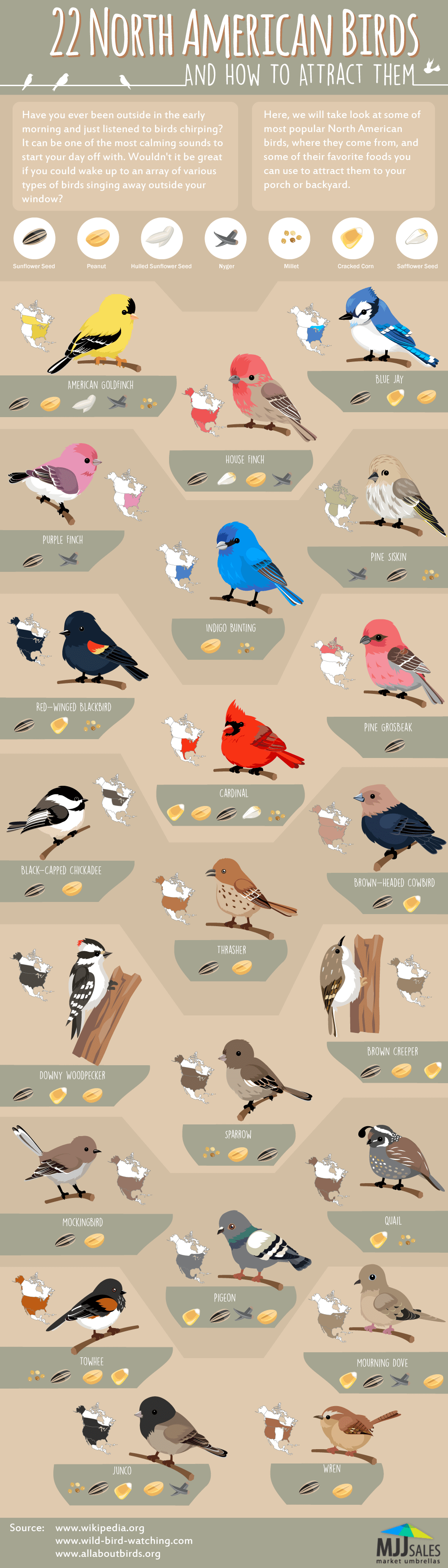 This Infographic From Mjj S Shows Off A Collection Of 22 The Most Por Birds Found In North America You Can Also See What Regions