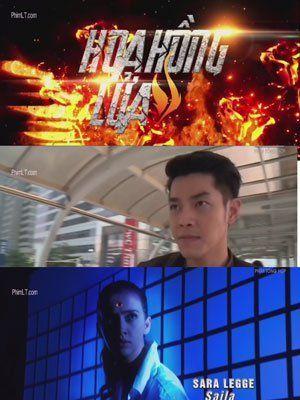 Phim Hoa Hồng Lửa | Thái Lan