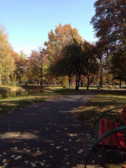 #autumn #skopje