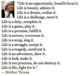 Life Is An Opportunity Benefit From It Quotes Pinterest
