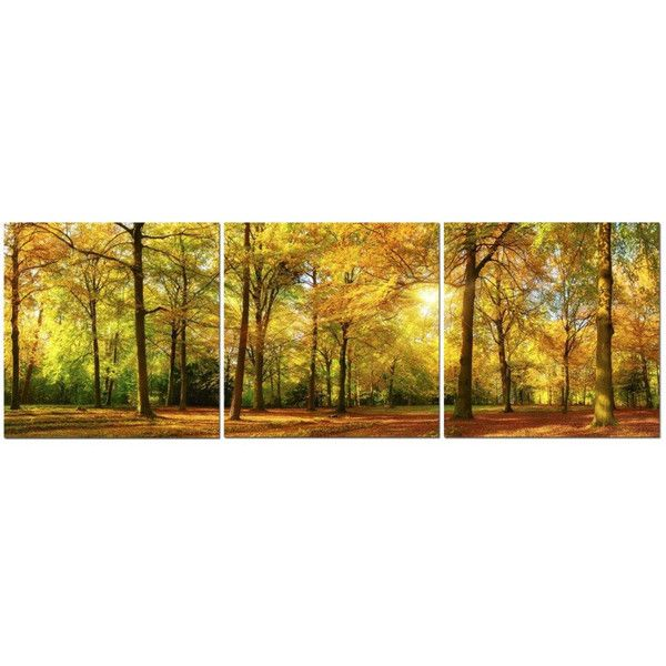 Autumn Forest In Daylight 24 x 24 3 Piece Canvas Print Set ($135 ...