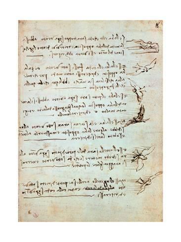 Giclee Print Codex On The Flight Of Birds By Leonardo Da Vinci 24x18in Leonardo Da Vinci