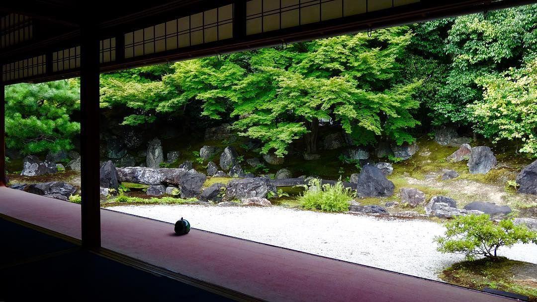 圓徳院 Entoku-in Temple #entokuin#japan#kyoto#temple#shrine#ig_japan#loves_nippon #圓徳院#神社仏閣#寺院#お寺#寺#庭園#御朱印#日本#京都#世界遺産#世界文化遺産#そうだ京都行こう#京都旅行