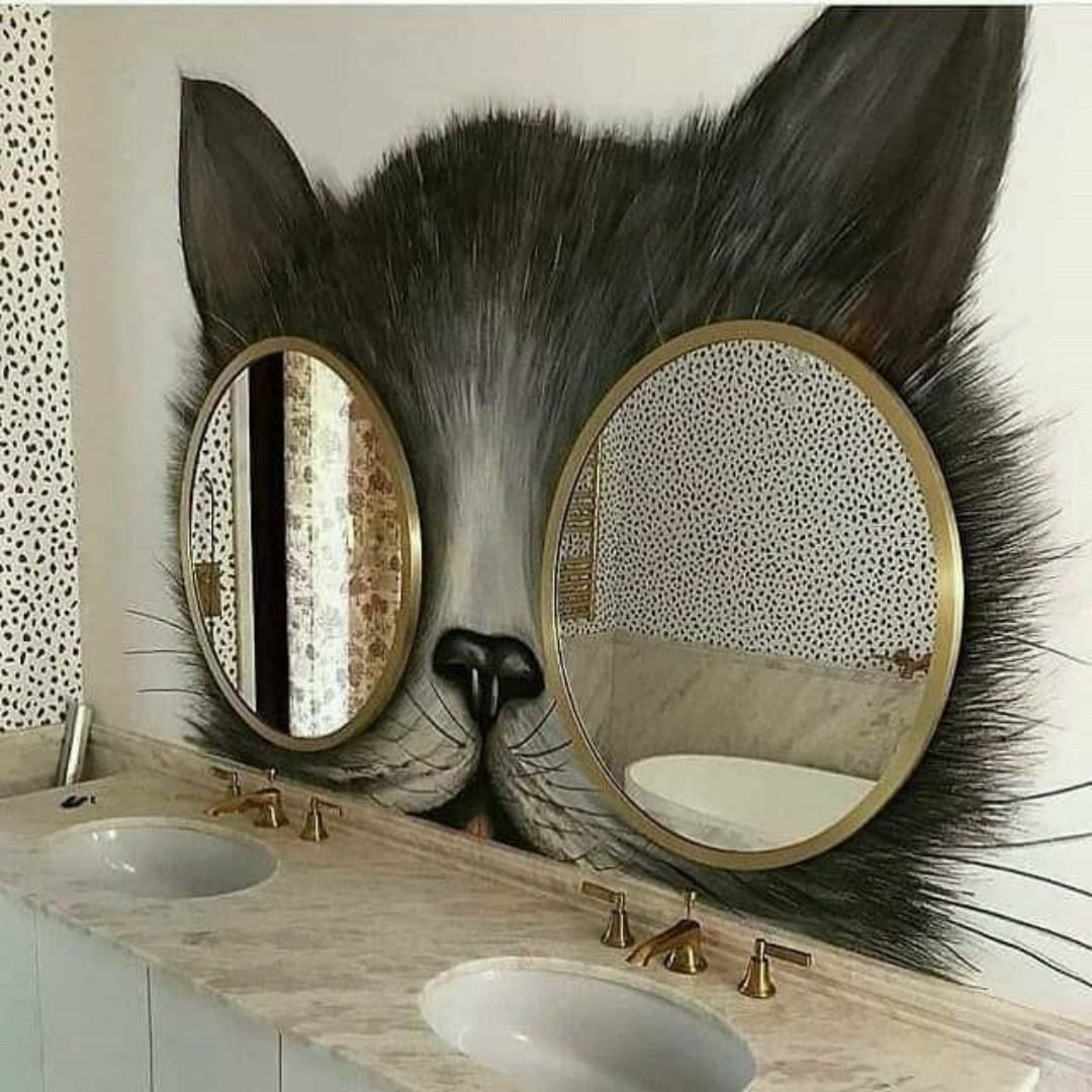 "Aww Cats on Instagram: ""It would be a great way to decorate a bathroom! #catphotography #petstagram #lovecats #catsoftheworld #catworld"""
