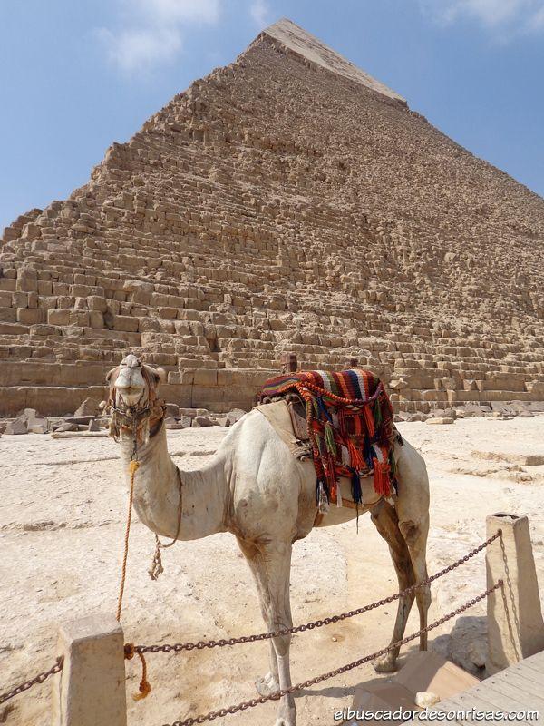 #Egipto