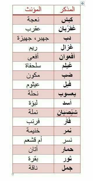 Pin By Safo White On كلمات لها معني Learn Arabic Online Learn Arabic Language Arabic Language