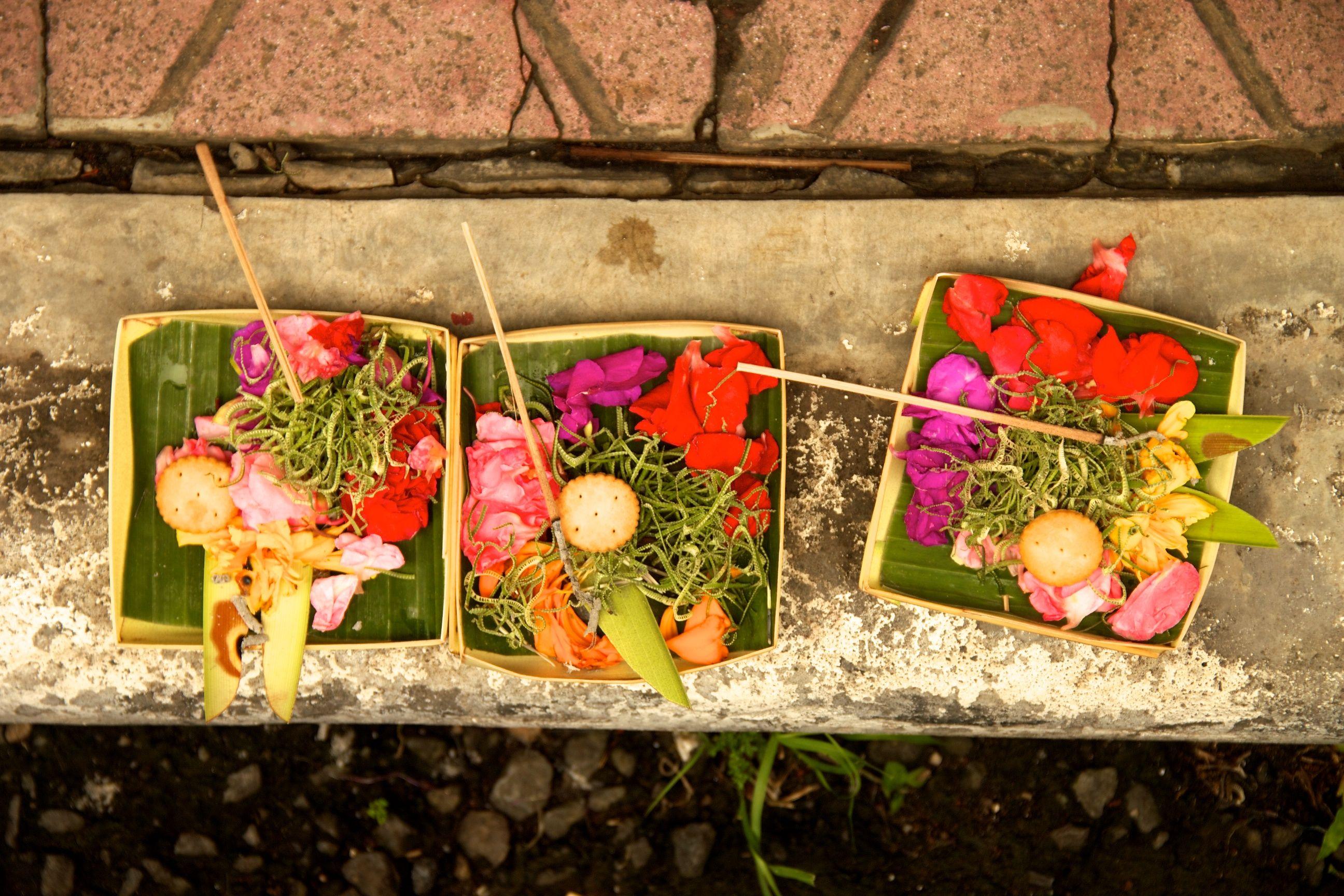 Bali offerings balinese bali indonesia ubud