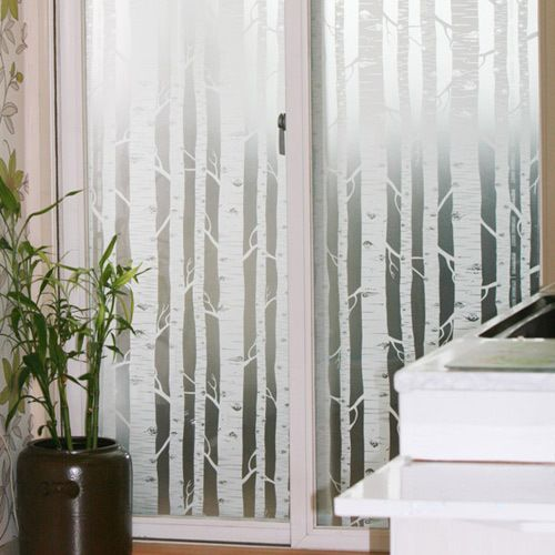 White Birch Tree Forest Frosting Frosted Window Film 24h