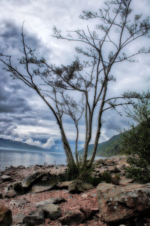 Loch Lomond Scotland #lochlomond