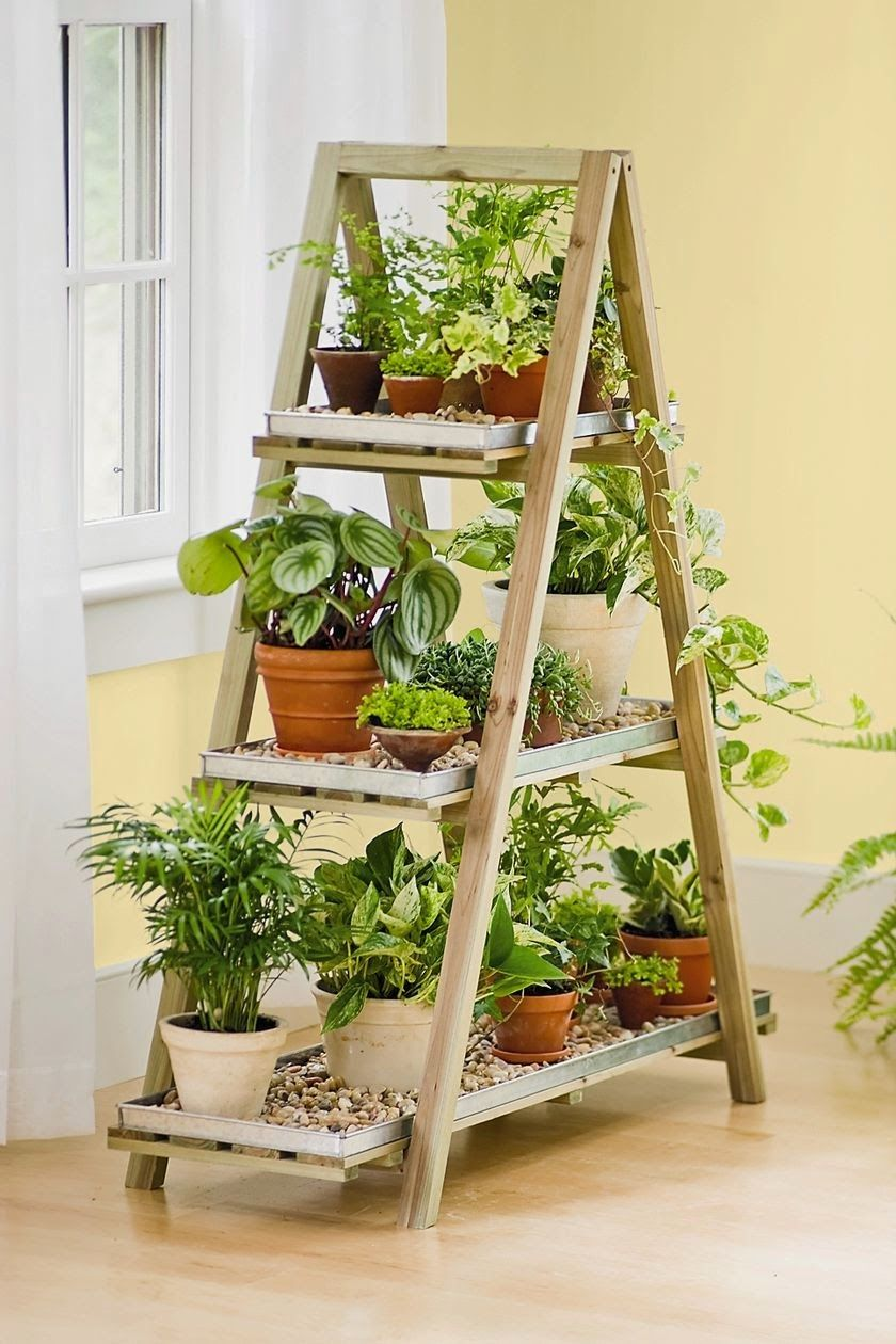 Diy Indoor Plant Display Stand That Can Be Perfect For Decorating Any Room