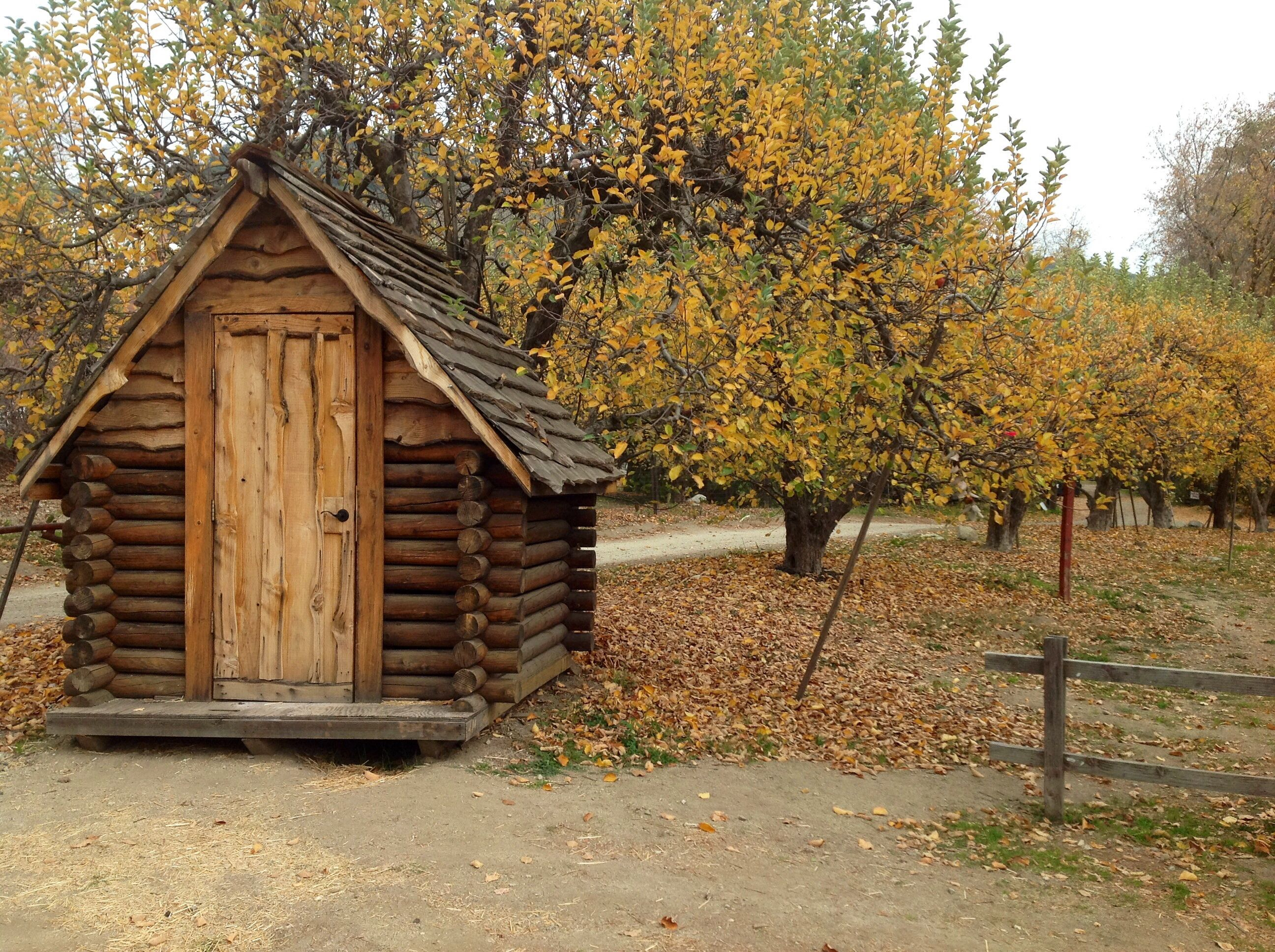 Beautiful Apple Orchard And Small Cabin House Styles