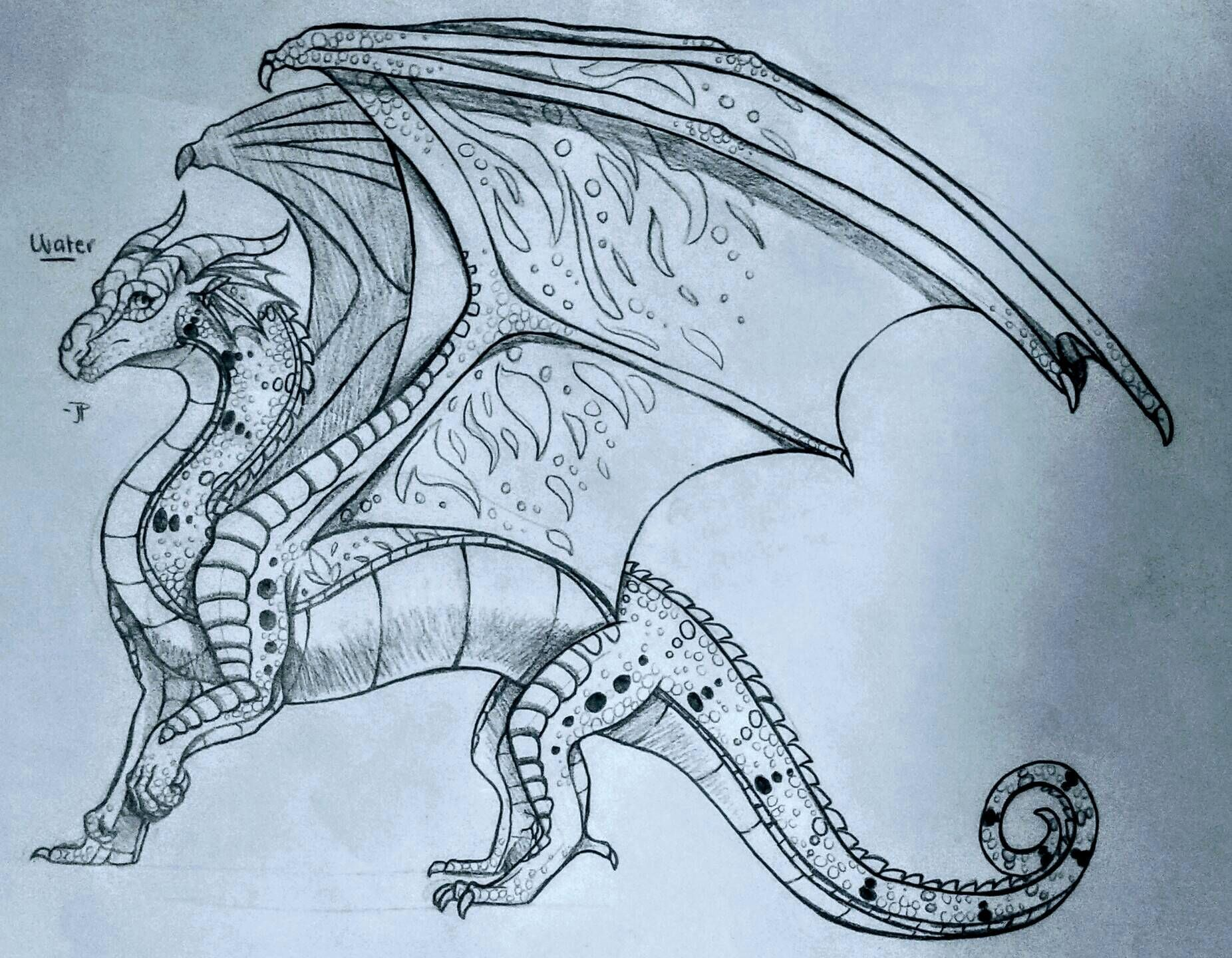 Drawing Book Anatomy In 2020 With Images Dragon Drawings In
