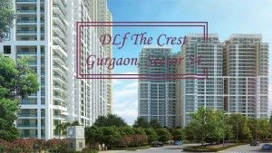 DLF Crest Gurgaon, the ultimate housing community which is being offered in Sector 54 Gurgaon and is offering you 2BHK, 3BHK, 4BHK, 5BHK apartments and penthouses where your life standard uplifts by DFL Ltd: http://blogs.rediff.com/indrealestates/2017/03/18/best-option-for-first-time-investors-dlf-crest-gurgaon/
