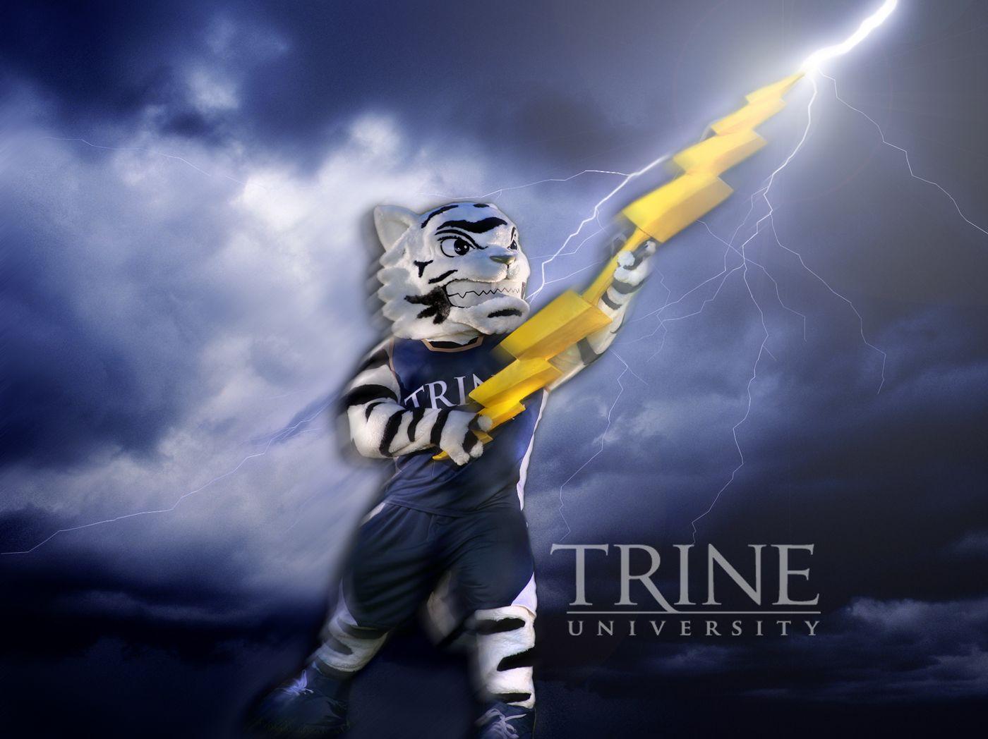 Trine University Mario Halloween 2020 Trine University's mascot Storm! | University, Storm, Thunder