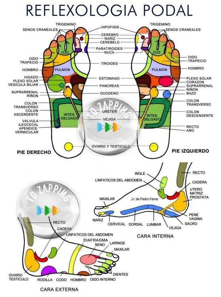 Beneficios del masaje en los pies antes de dormir | Beneficios del ...