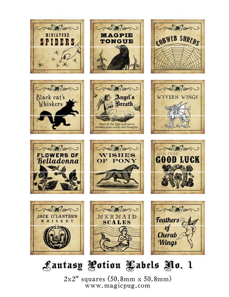 image regarding Harry Potter Apothecary Labels Free Printable identified as Harry Potter Potions Labels Totally free Printables Halloween