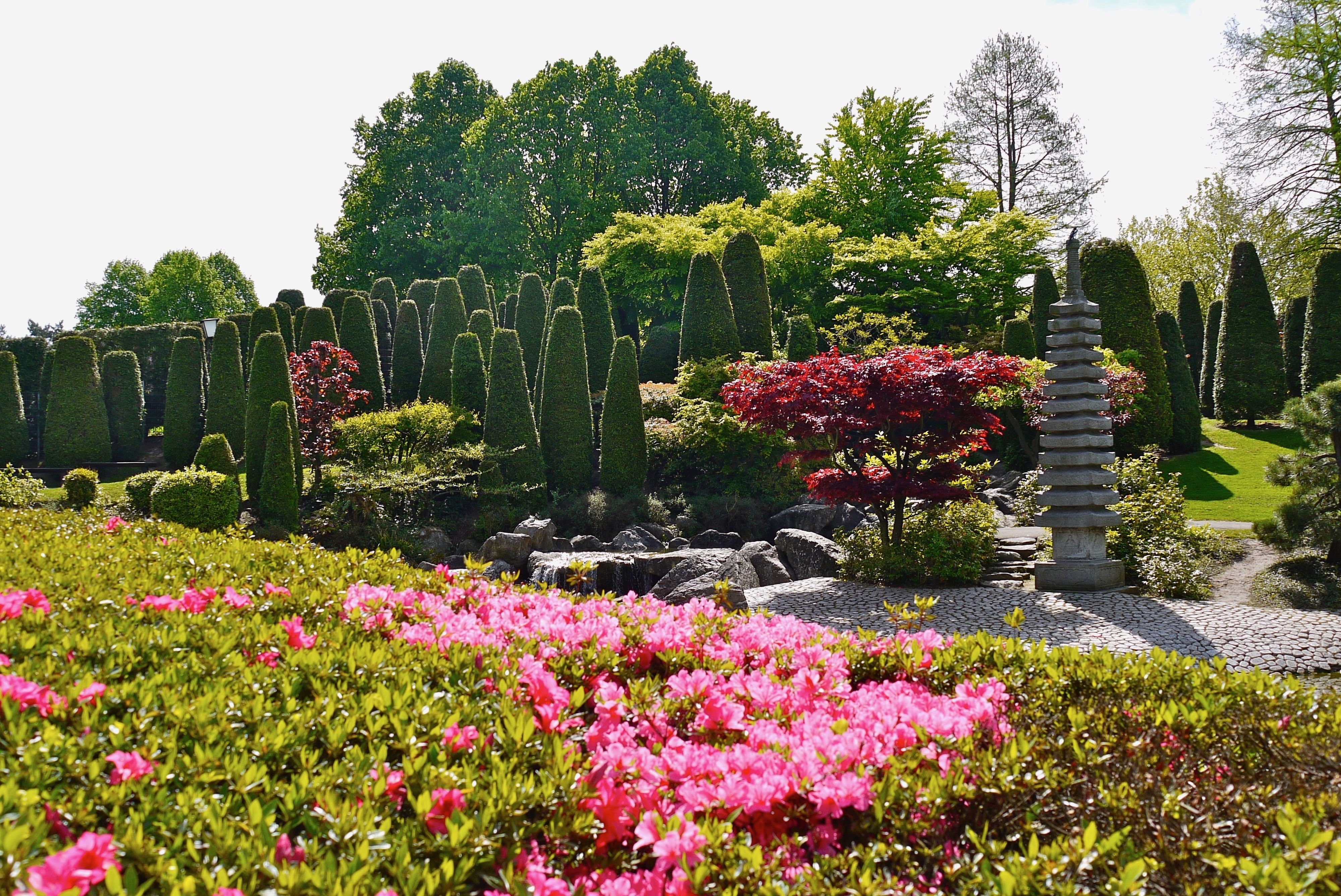 Japanischer Garten In Bonn Bonn Reiseziele Italien Botanischer Garten