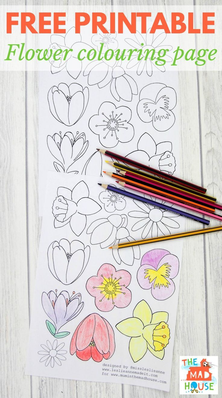 free flower colouring page for adults spring pinterest