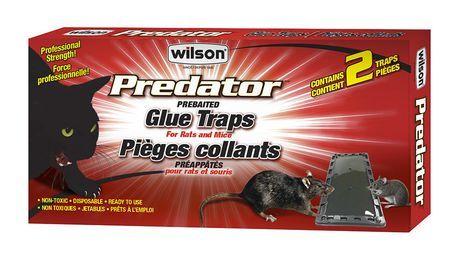 Wilson Wilson Predator Rats And Mice Glue Traps Mouse Glue Trap Glue Traps Traps