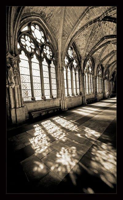 Cloister of Burgos by Botond Horváth #overgrownaesthetic