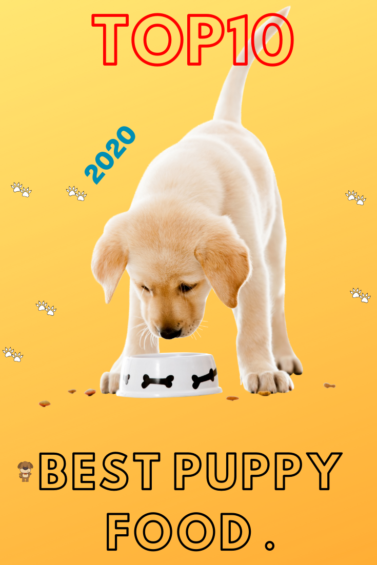 Best Dog Food For Puppy In 2020 Top 10 Best Puppy Food Best Dog Food Best Puppy Food Puppy Food
