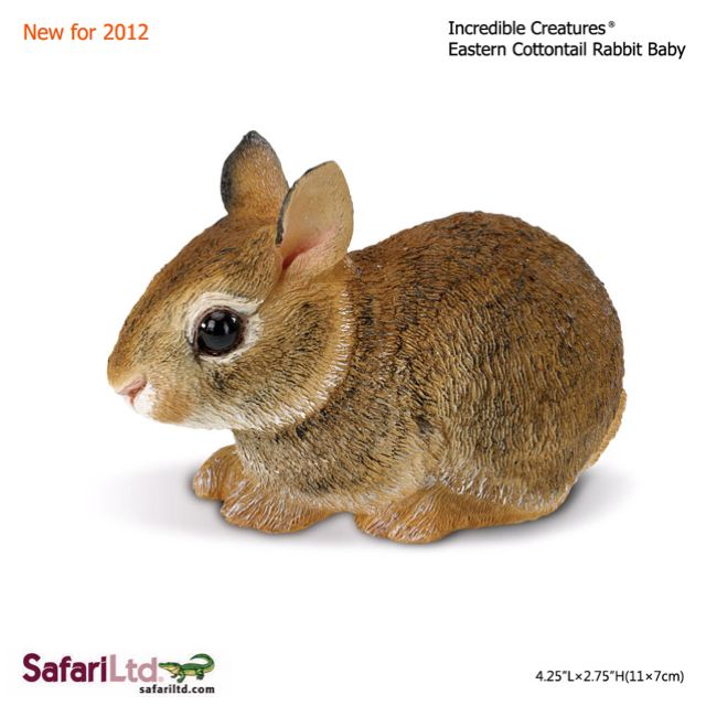 Found from Canada to South America, befriend our delightful Eastern Cottontail Rabbit Baby for $8.99.