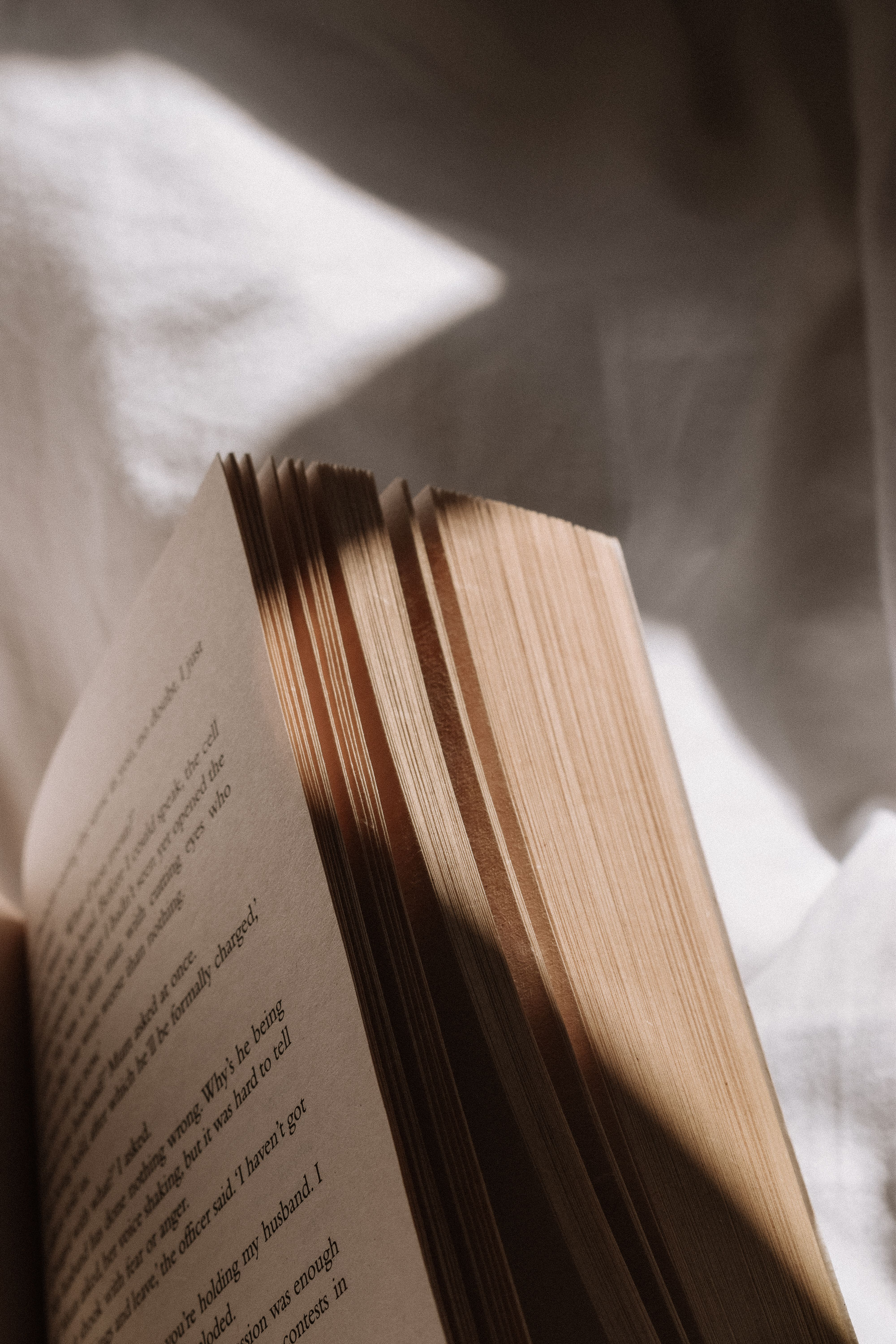 Book Pages - Vintage Photography - Light and Shado