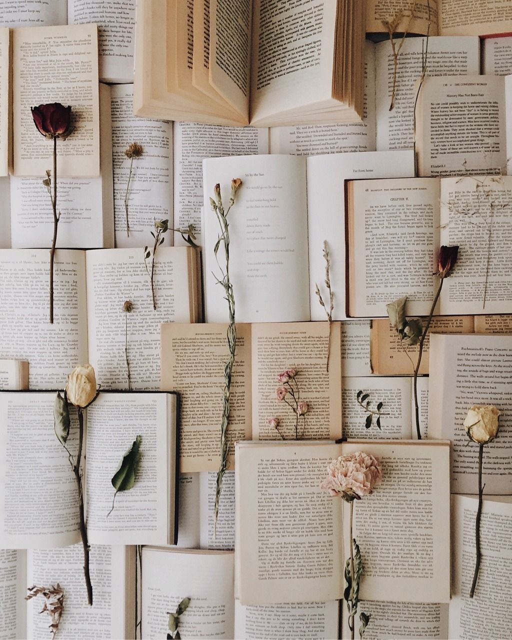 Pin By Lizzie M On Aes Capricorn Moon Book Wallpaper Book Aesthetic Aesthetic Iphone Wallpaper