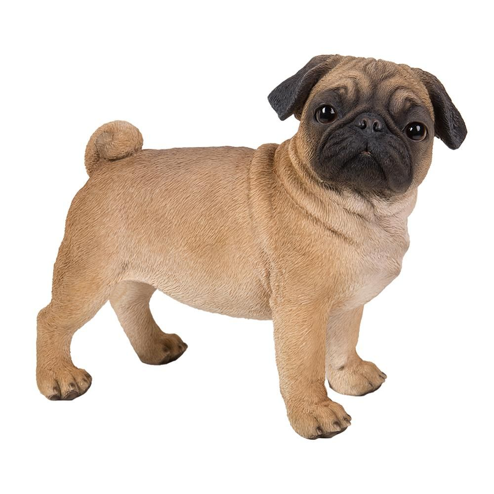 Pug Statue Statue Glass Eyes Life Size Dog Pugs Real Dog Small Pug