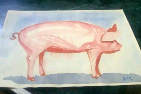 WatercolorPig.jpg 600×401 pixels | Moose art, Animals, Art
