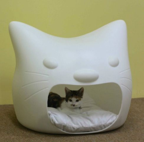 Image result for cat beds funny